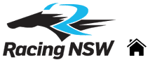 Racing Network